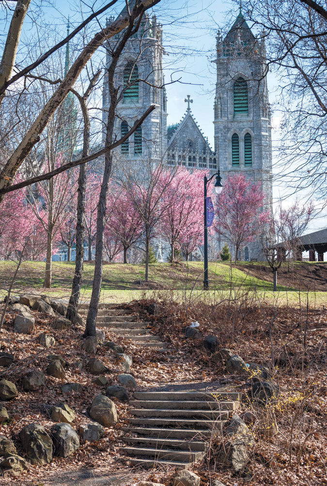 Cathedral Basilica of the Sacred Heart with cherry blossoms viewed from Branch Brook Park
