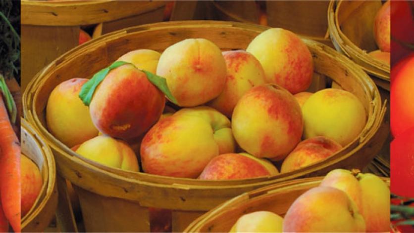 farmers market goods