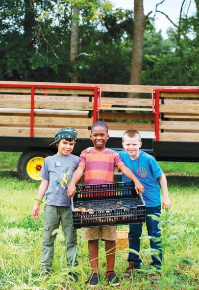 Adrian Lopez, 7, Ethan Davis, 7, and Anthony Salkauski, 8, carry freshly harvested potatoes at Gravity Hill Farm.