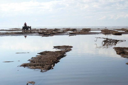 Oyster Farming and ATVs