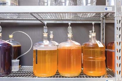 Experiments at Homebrew University.