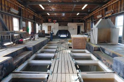 Floating Upweller System