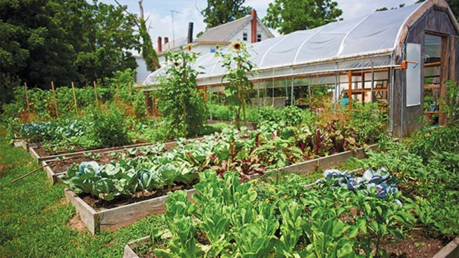 Raised beds and the high tunnel at CATA community farm.