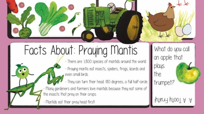 edible kids farmers markets
