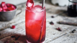 Mexican Rhubarb Mule Cocktail